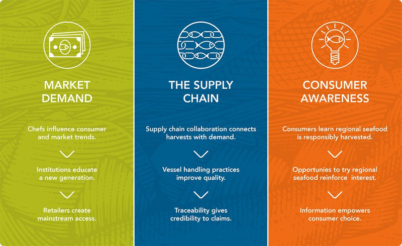 This graphic shows three columns, one green, one blue, and one orange that explain different components of sustainable seafood theory: market demand, the supply chain, and consumer awareness.