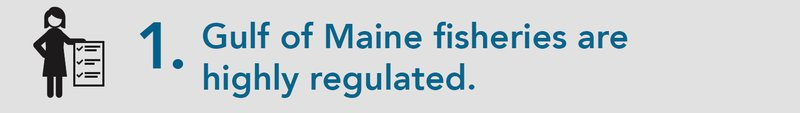 "A grey background appears behind blue text that reads: ""1. Gulf of Maine fisheries are highly regulated."" On the left side of the banner image, a person outlined in black holds a massive checklist."